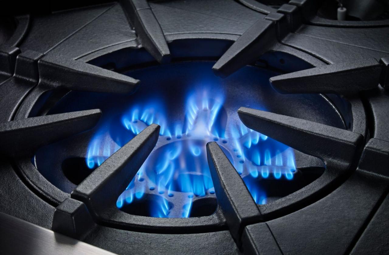 bluestar range open burner
