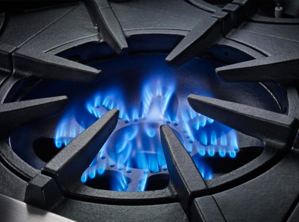 bluestar platinum range burner