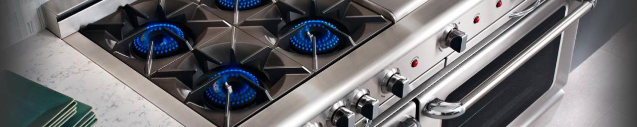 capital culinarian burners
